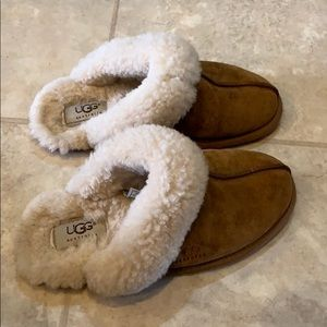 Ugg Slippers (Size 5)